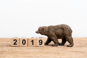 stock market bears